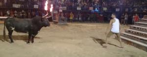 Man vs. Flaming Bull