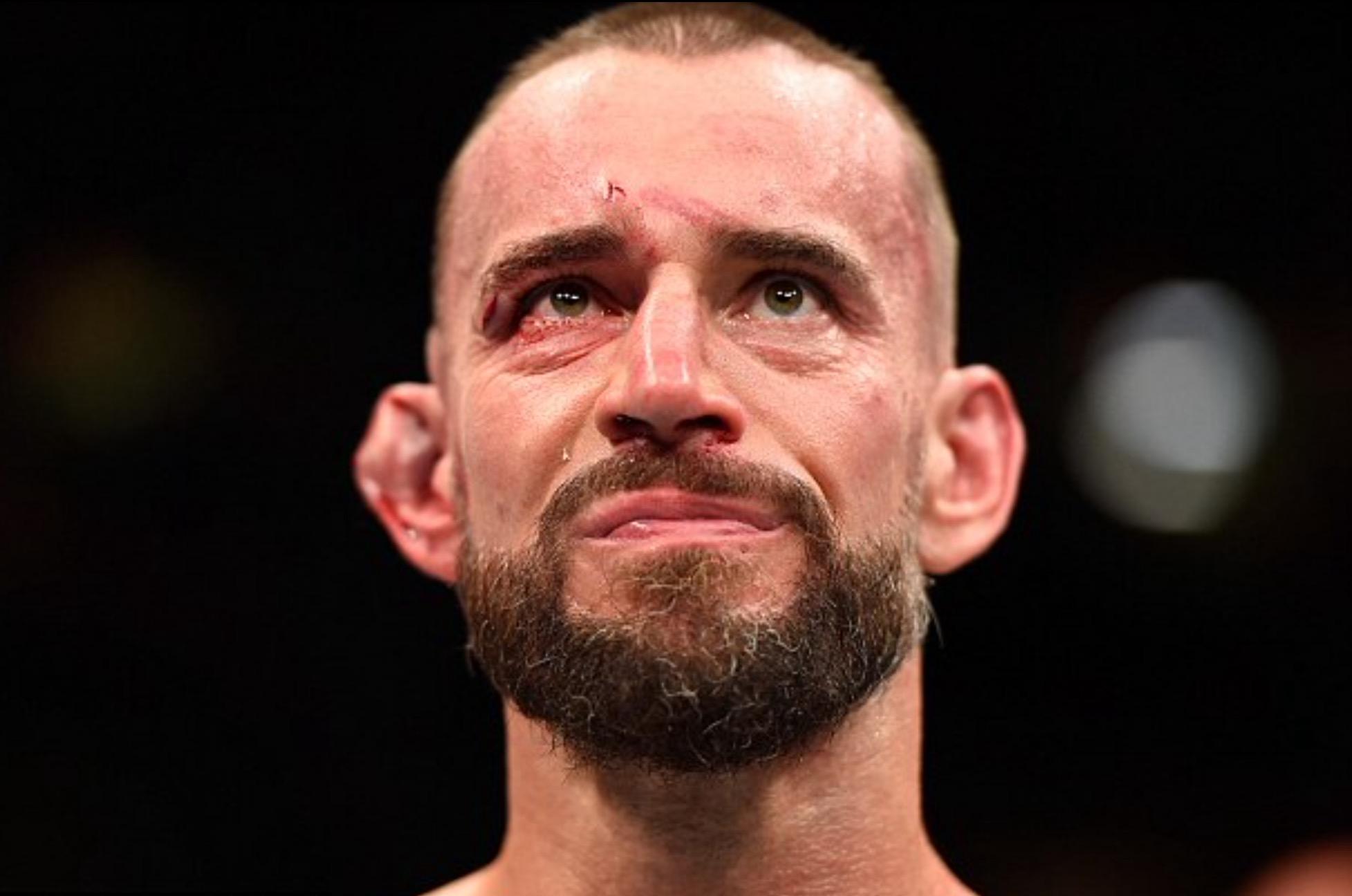 Cm punk UFC 203